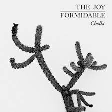 the-joy-formidable-cholla.jpg